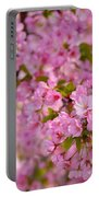Cherry Blossoms 2013 - 096 Portable Battery Charger