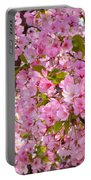 Cherry Blossoms 2013 - 097 Portable Battery Charger
