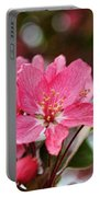 Cherry Blossoms And Greeting Card Blank Portable Battery Charger