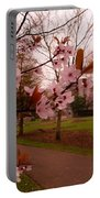 Cherry Blossoms At Kirkland In Kendal Portable Battery Charger