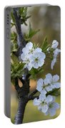 Cherry Blossoms In White Portable Battery Charger