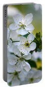 Cherry Flowers Portable Battery Charger