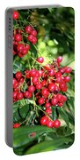 Cherry Laurel  Portable Battery Charger