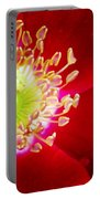Cherry Pie Rose 01a Portable Battery Charger