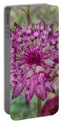 Cherry-queen Of The Prairie Flower Portable Battery Charger