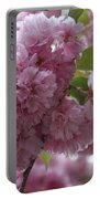 Cherry Tree Blossoms Portable Battery Charger