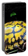 Chesapeake Box Turtle Portable Battery Charger