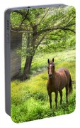 Chestnut Horse In A Sunny Meadow Portable Battery Charger