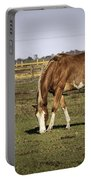 Chestnut In The Pasture Portable Battery Charger