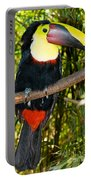 Chestnut Mandibled Toucan Portable Battery Charger