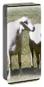 Cheviot Sheep 2 Portable Battery Charger