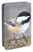 Chickadee On A Used To Be Tree Portable Battery Charger