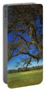 Chickamauga Battlefield Portable Battery Charger by Mountain Dreams