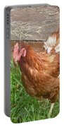 Chicken Portrait Portable Battery Charger