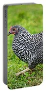 Chicken Walking On Green Pasture Portable Battery Charger