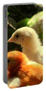 Cute Chicks Portable Battery Charger