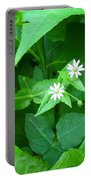 Chickweed Trio Portable Battery Charger