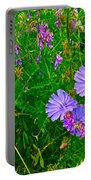 Chicory And Purple Vetch Along Rivier Du Nord Trail In Laurentians-quebec Portable Battery Charger