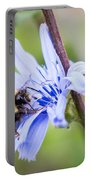 Chicory Bee Portable Battery Charger