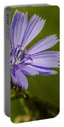 Chicory Portable Battery Charger