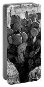Chihuahua Desert Cactus Bw Portable Battery Charger