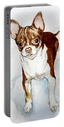Chihuahua White Chocolate Color. Portable Battery Charger