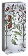 Chilli Pepper Plants Portable Battery Charger