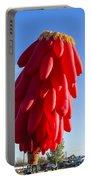 Chilli Ristra Balloon Portable Battery Charger
