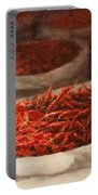 Chillis 2010 Portable Battery Charger