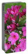 Chinese Apple Blossoms Portable Battery Charger
