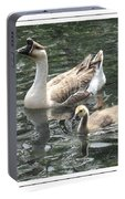 Chinese Swan Goose And Gosling Portable Battery Charger