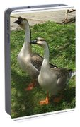 Chinese Swan Goose Pair 2 Portable Battery Charger