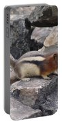 Chipmunk Tones Portable Battery Charger