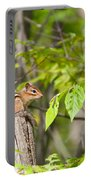 Chipmunk Shares Fence Post Portable Battery Charger