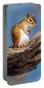 Chipmunk Sunning Portable Battery Charger