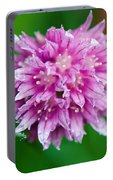 Chive Flower Portable Battery Charger