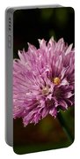 Chives Portable Battery Charger