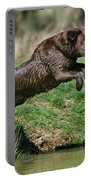 Chocolate Labrador Jumping Portable Battery Charger