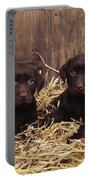 Chocolate Labrador Puppies Portable Battery Charger