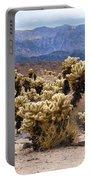 Cholla Cactus Garden Portable Battery Charger