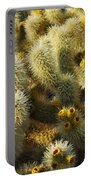 Cholla Cactus Garden Mirage Portable Battery Charger