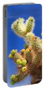 Cholla Cactus I By Diana Sainz Portable Battery Charger