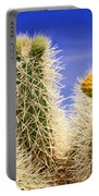Cholla Cactus In Joshua Tree By Diana Sainz Portable Battery Charger