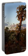 Cholla Cactus View Portable Battery Charger
