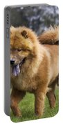 Chow Chow Dog Portable Battery Charger