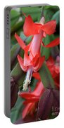 Christmas Cactus 1 Portable Battery Charger