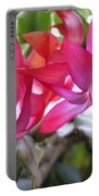 Christmas Cactus Schlumbergera Portable Battery Charger