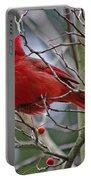 Christmas Cardinal Portable Battery Charger