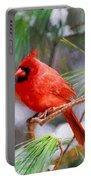 Christmas Cardinal - Male Portable Battery Charger