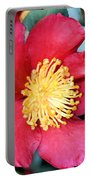 Christmas In A Flower Portable Battery Charger